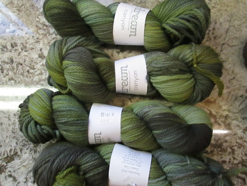 Olive Canyon from\u00a0Dream in Color yarn