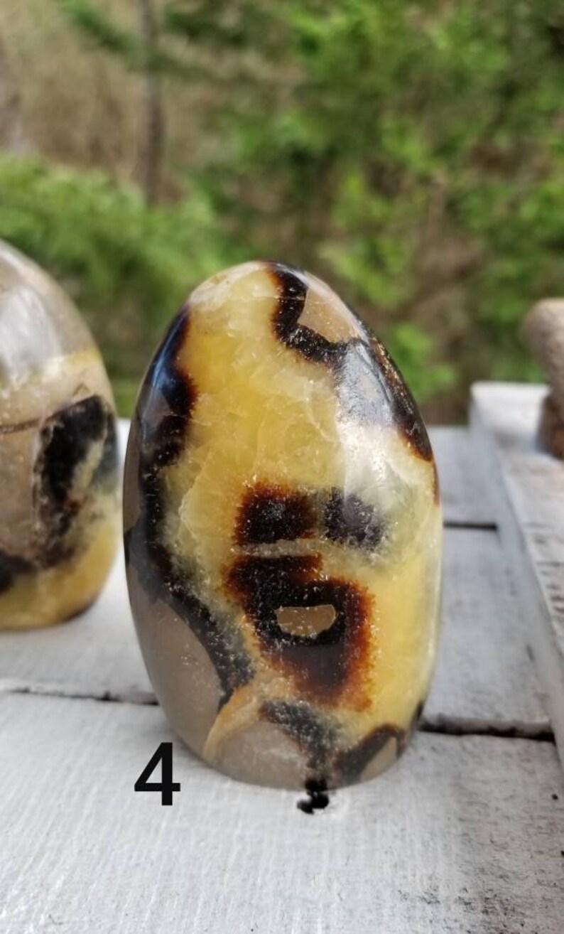 Septarian Septarian Free Form Standing Septarian specimen Polished Septarian Stone