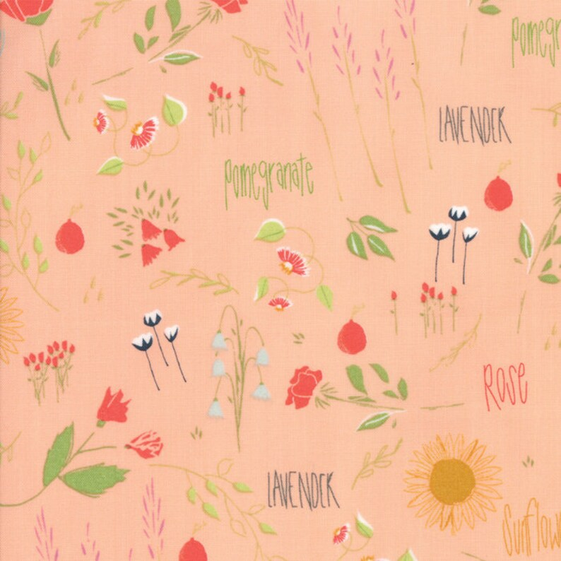 Moda Fabric  The Front Porch by Sherri and Chelsi  1/2 yard image 0